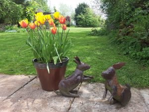 two metal rabbits next to a tub of garden tulips